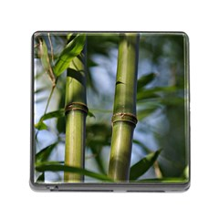 Bamboo Memory Card Reader with Storage (Square)