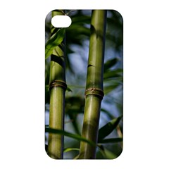 Bamboo Apple Iphone 4/4s Premium Hardshell Case