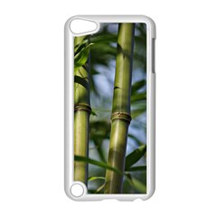 Bamboo Apple Ipod Touch 5 Case (white)