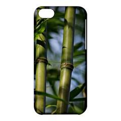 Bamboo Apple iPhone 5C Hardshell Case