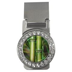 Bamboo Money Clip (CZ)