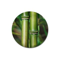 Bamboo Magnet 3  (Round)
