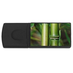 Bamboo 2GB USB Flash Drive (Rectangle)