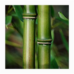 Bamboo Glasses Cloth (Medium)