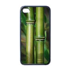 Bamboo Apple iPhone 4 Case (Black)