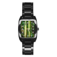 Bamboo Stainless Steel Barrel Watch