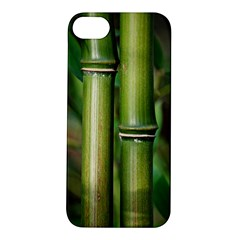 Bamboo Apple iPhone 5S Hardshell Case