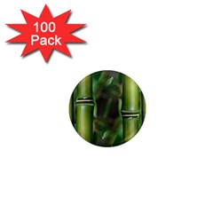 Bamboo 1  Mini Button Magnet (100 pack)