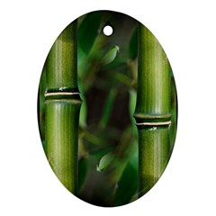 Bamboo Oval Ornament (Two Sides)