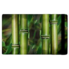 Bamboo Apple Ipad 2 Flip Case