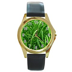 Grass Round Leather Watch (Gold Rim)