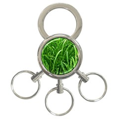 Grass 3 Ring Key Chain