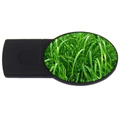 Grass 2GB USB Flash Drive (Oval)