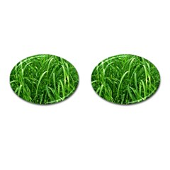 Grass Cufflinks (Oval)