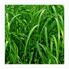 Grass Glasses Cloth (Medium, Two Sided)