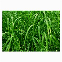 Grass Glasses Cloth (Large, Two Sided)