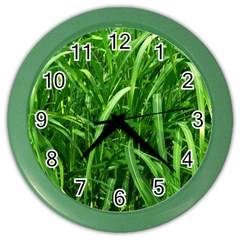 Grass Wall Clock (Color)