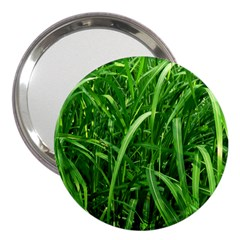 Grass 3  Handbag Mirror