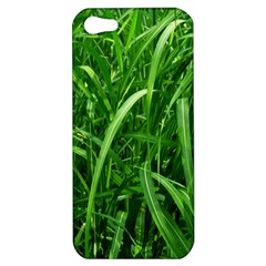 Grass Apple iPhone 5 Hardshell Case