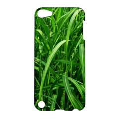 Grass Apple Ipod Touch 5 Hardshell Case
