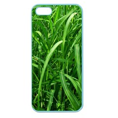 Grass Apple Seamless iPhone 5 Case (Color)