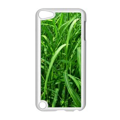 Grass Apple iPod Touch 5 Case (White)