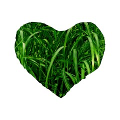 Grass 16  Premium Heart Shape Cushion
