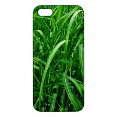 Grass iPhone 5 Premium Hardshell Case
