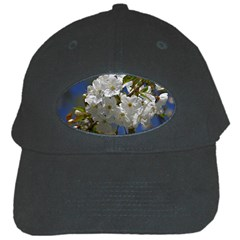 Cherry Blossom Black Baseball Cap