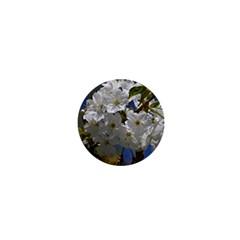 Cherry Blossom 1  Mini Button