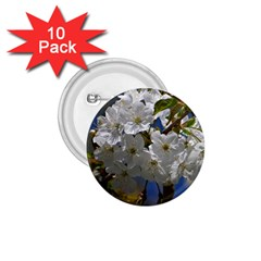Cherry Blossom 1.75  Button (10 pack)