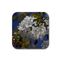 Cherry Blossom Drink Coasters 4 Pack (Square)