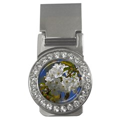 Cherry Blossom Money Clip (cz)