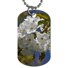 Cherry Blossom Dog Tag (Two-sided)