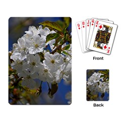 Cherry Blossom Playing Cards Single Design