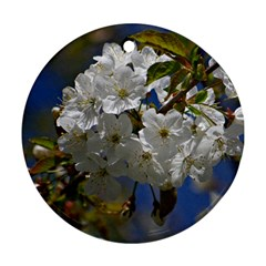 Cherry Blossom Round Ornament (Two Sides)
