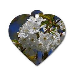 Cherry Blossom Dog Tag Heart (two Sided)