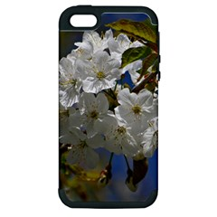 Cherry Blossom Apple iPhone 5 Hardshell Case (PC+Silicone)
