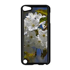 Cherry Blossom Apple iPod Touch 5 Case (Black)