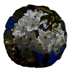 Cherry Blossom 18  Premium Round Cushion