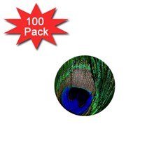 Peacock 1  Mini Button (100 pack)