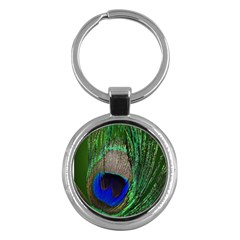 Peacock Key Chain (Round)