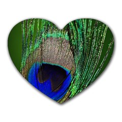 Peacock Mouse Pad (heart)