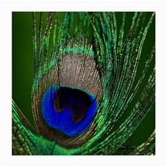 Peacock Glasses Cloth (medium)