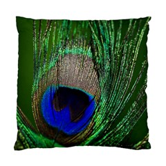Peacock Cushion Case (single Sided)