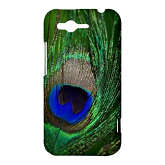Peacock HTC Rhyme Hardshell Case