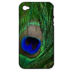 Peacock Apple Iphone 4/4s Hardshell Case (pc+silicone)
