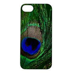 Peacock Apple iPhone 5S Hardshell Case