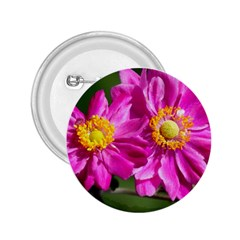 Flower 2.25  Button
