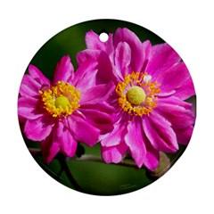 Flower Round Ornament
